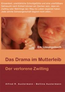 KLEIN_15_buch-der-verlorene-zwilling_RZ