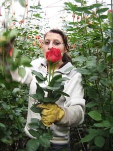 KLEIN_43_Cactus Frau m Rose_RZ Kopie