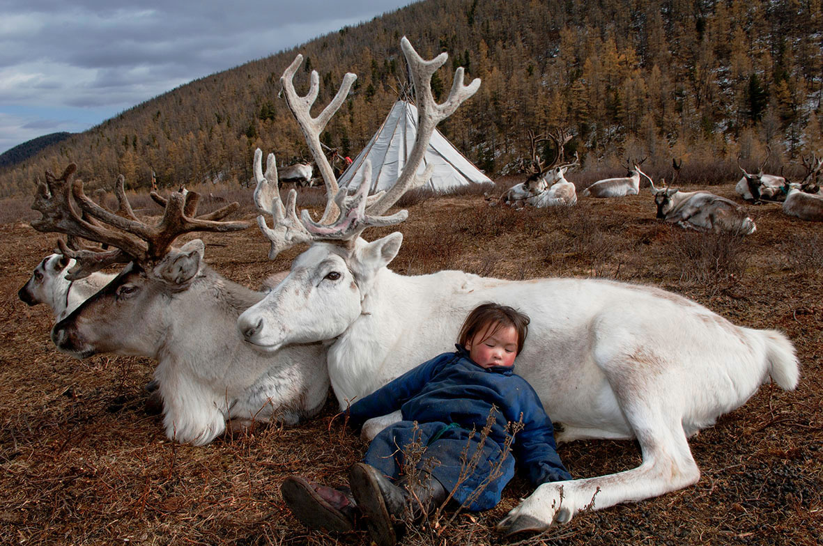 35_sardar_h_child-sleeping-with-totem-deer_west-taiga_hovsgol-province_2006-klein