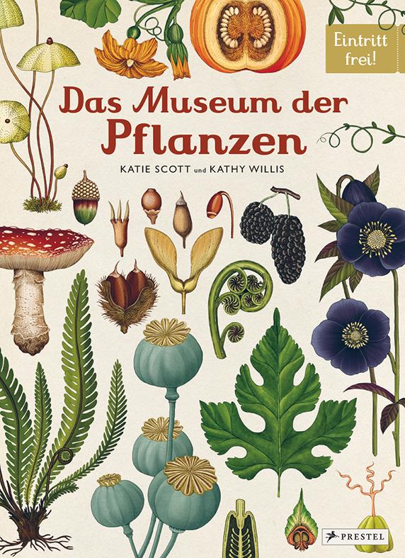 Kathy Willis/Katie Scott:Das Museum der Pflanzen.Prestel Verlag, ab 8 Jahre, 25,70 Euro