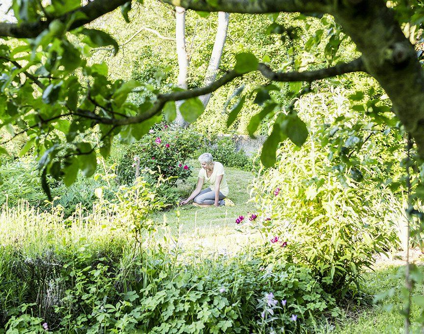Die Lehre meines Gartens
