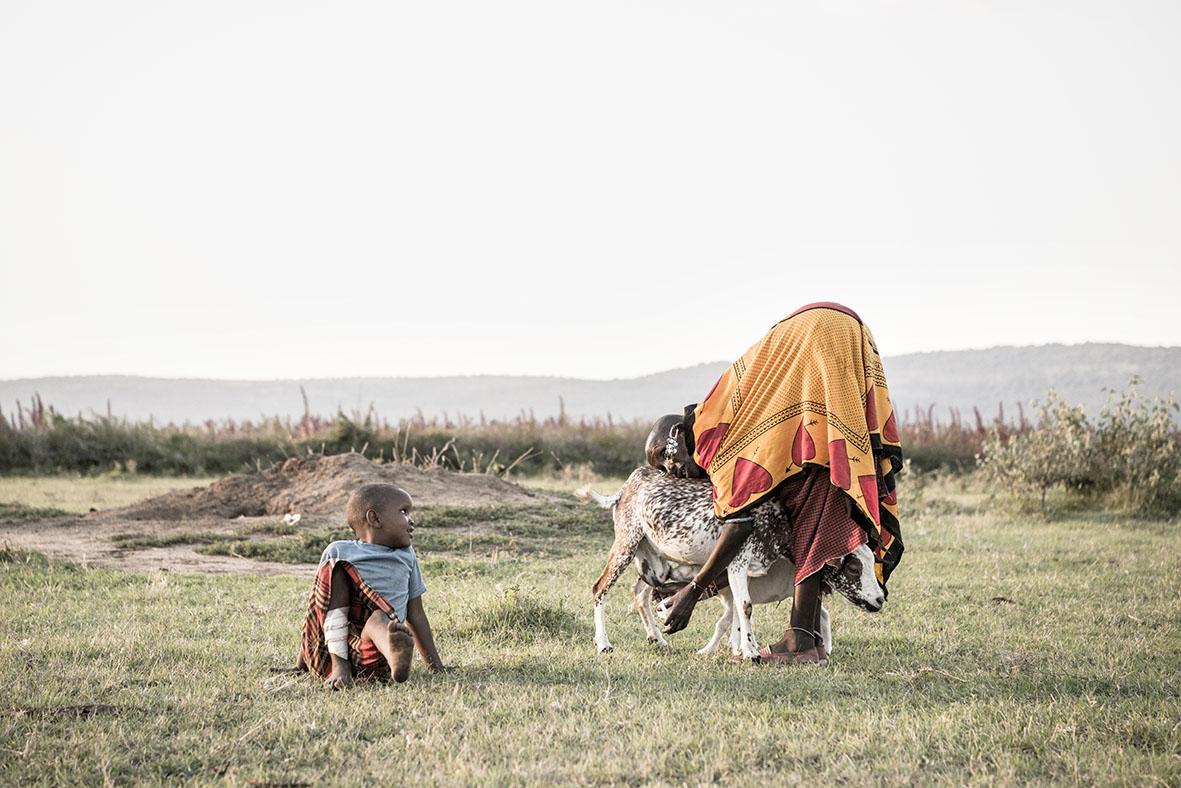 Maasai-Baumeisterinnen
