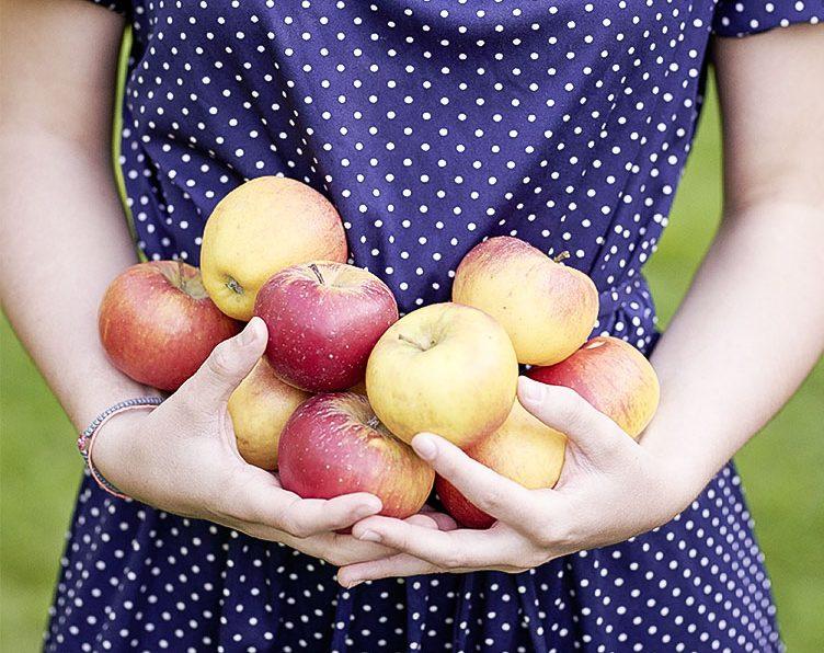 Fruchtbar durch richtige Nahrung?