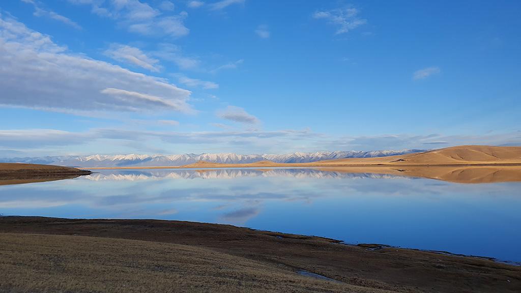 Die mongolische Taiga