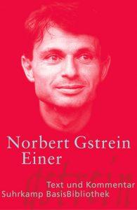 Buch Norbert Gstrein Einer