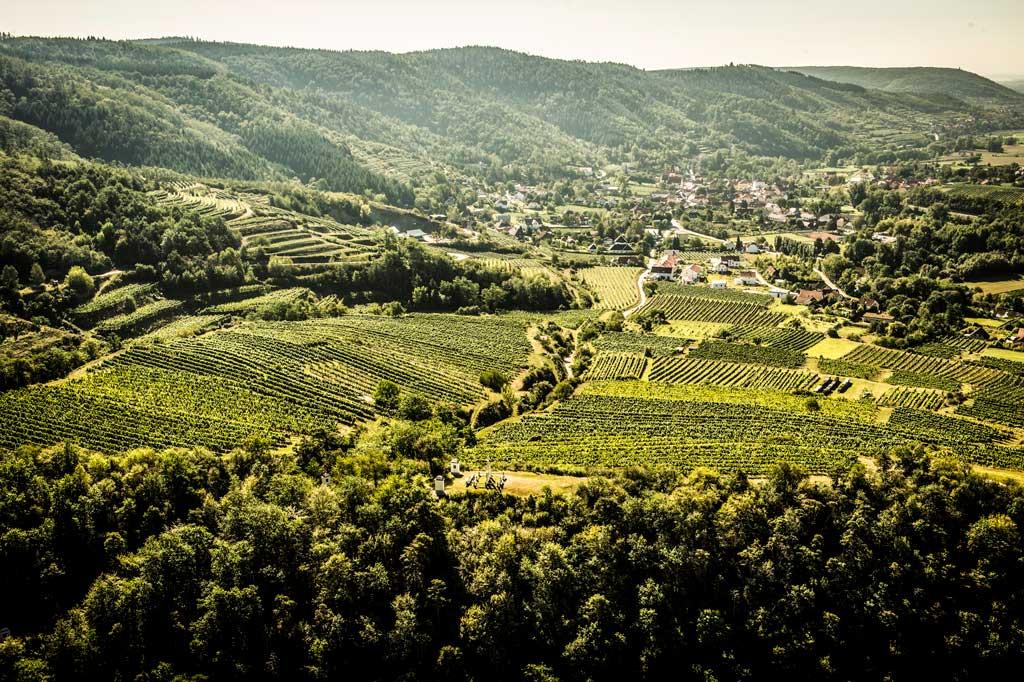 Literarische Reise nach Niederösterreich