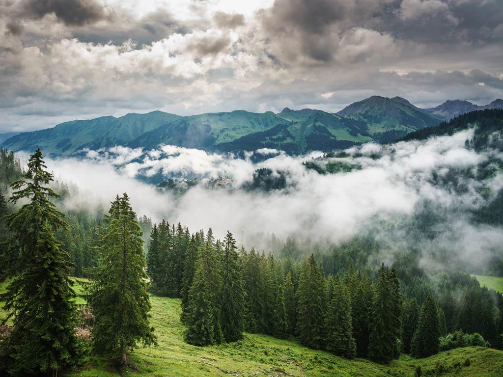 Literarische Reise nach Vorarlberg