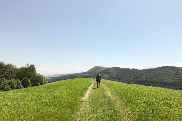 Am Pielachtaler Pilgerweg – August 2021