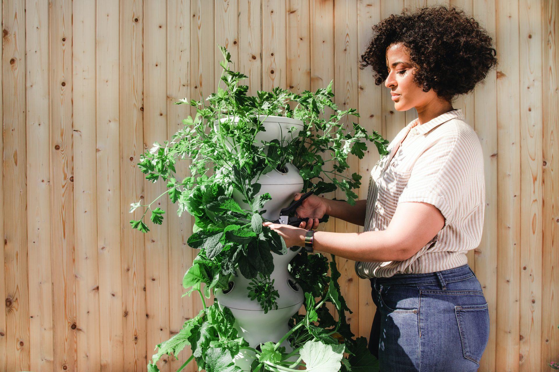 Schön und robust: So machen Sie Ihren Garten klimafit